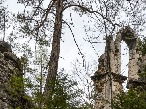 Ruine Sigmundsburg Fernstein