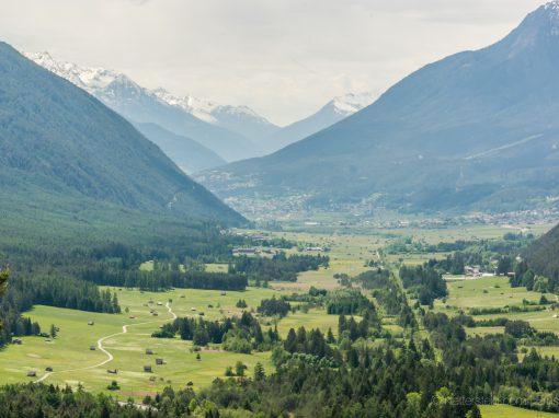 Rund um die Pappel in Dormitz | Tirol-Splitter