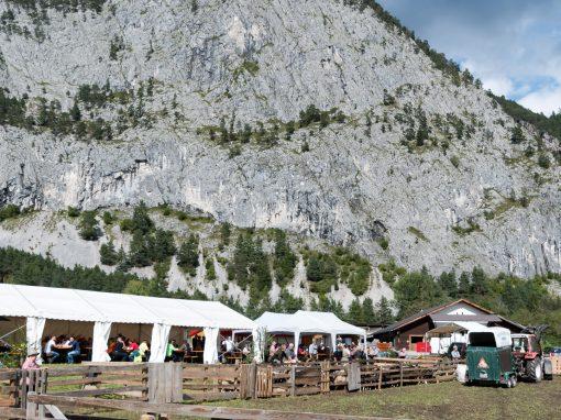 Schafschoad 2017