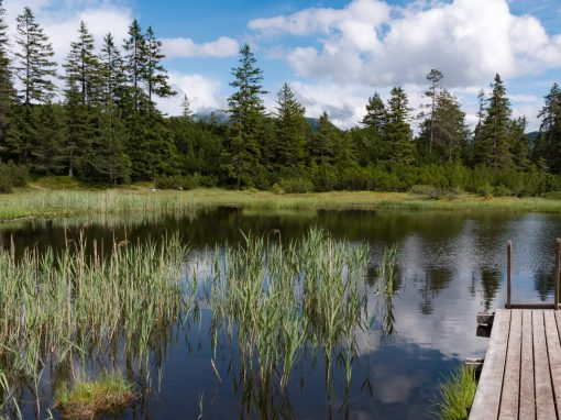 Seen oberhalb von Nassereith