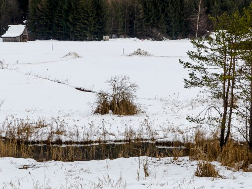 Tirol Splitter See-Eck
