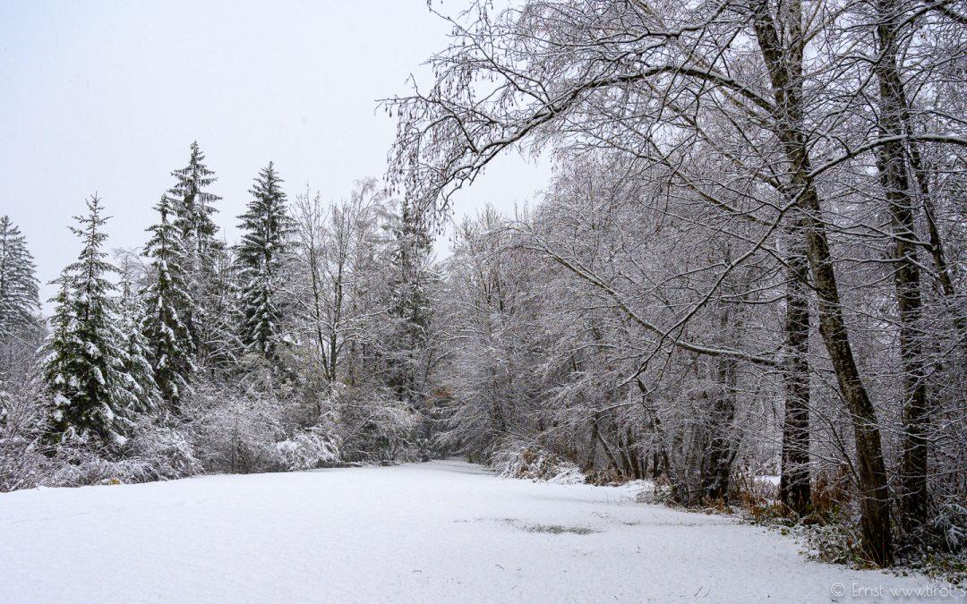 Novemberschnee in Nassereith